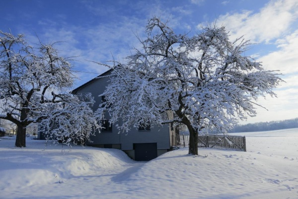 Winterwunderland am Taubenhof