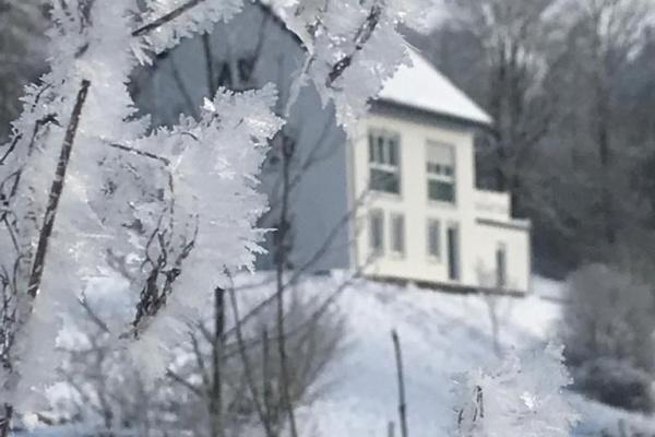 Winterimpressionen - Ferienhaus Naturton im Hintergrund