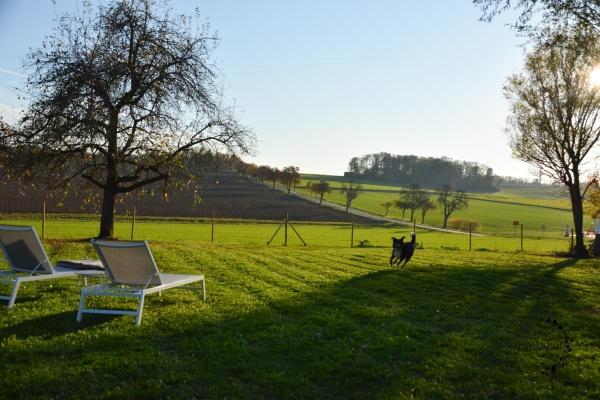 2.100m² eingezäuntes Grundstück mit Blick in die Hohenloher Land