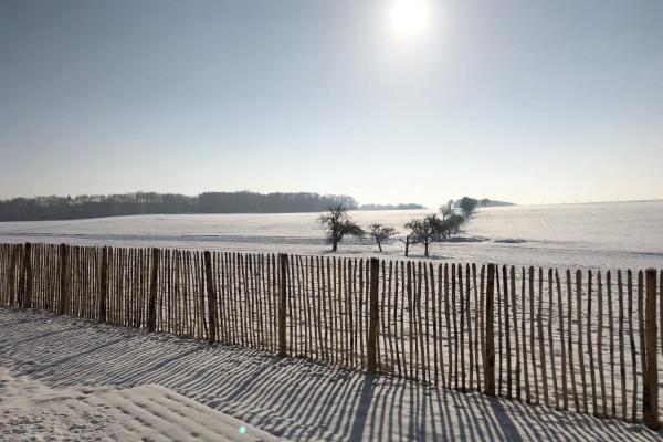 Blick ins winterliche Weiss!