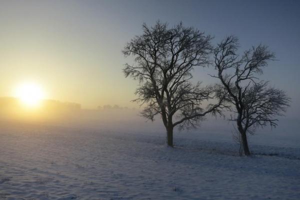 Winterlandschaft am Haus!