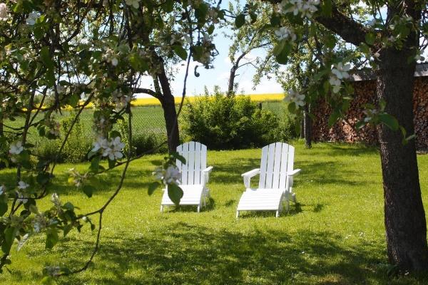 Der Loft-Garten! Ca. 600m² große, komplett eingezäunte Freifläche.