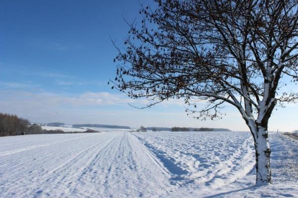Winterlandschaft am Haus