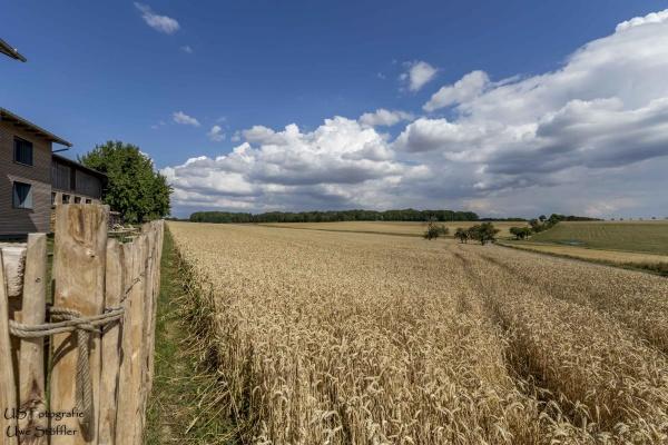 Der Traum vom Landleben – weitläufige Felder und Wälder umgeben das Ferienhaus