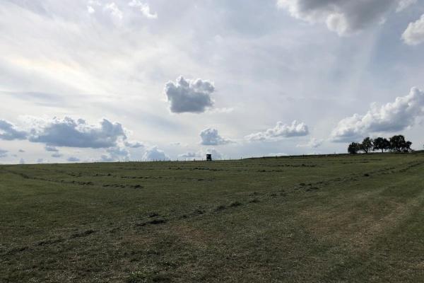Landschaft am Haus Grün
